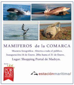 mamiferos-de-la-comarca
