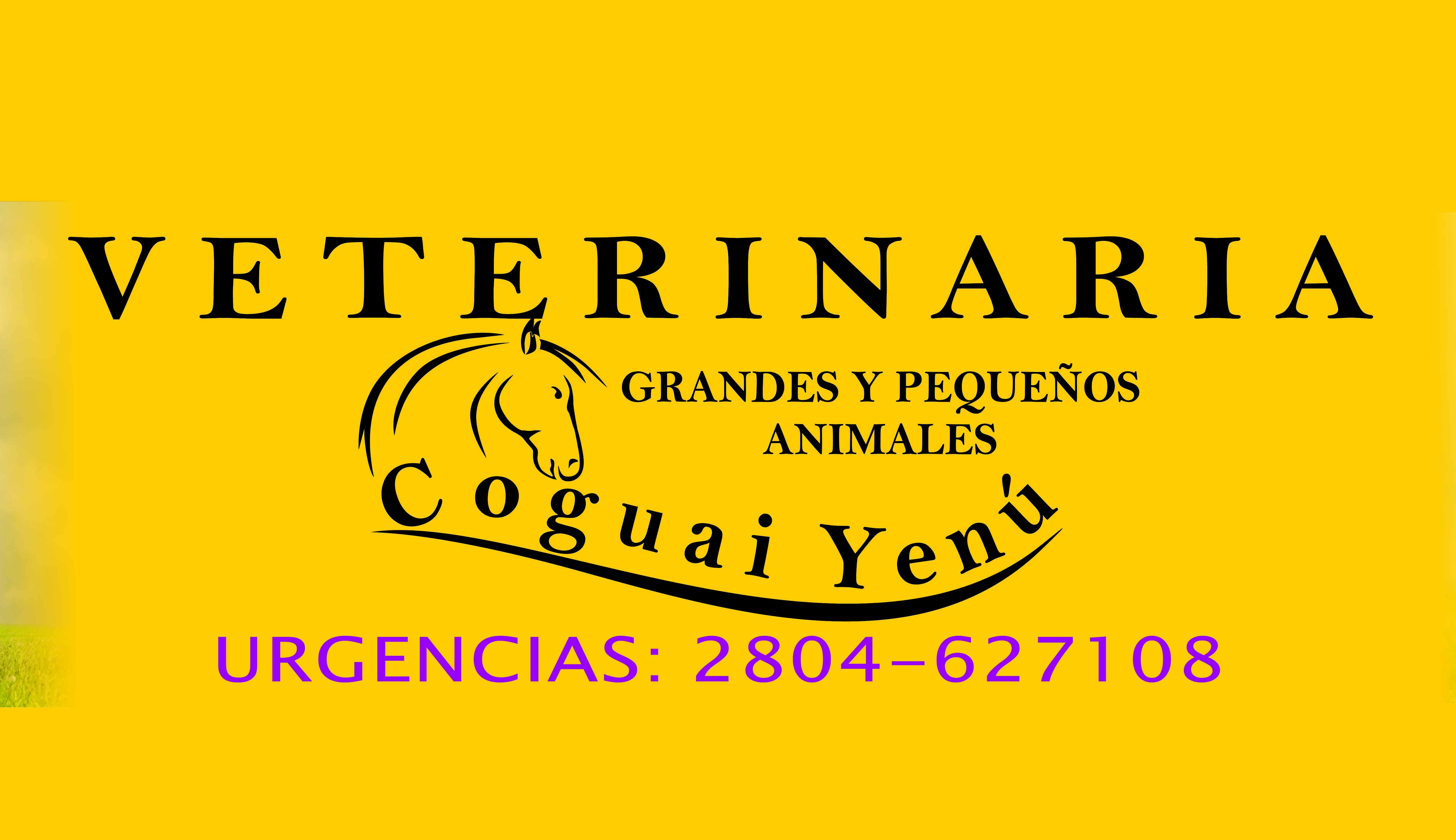 Veterinaria Coguay Yenú